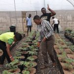 BIC Farms, hydroponics, advanced training