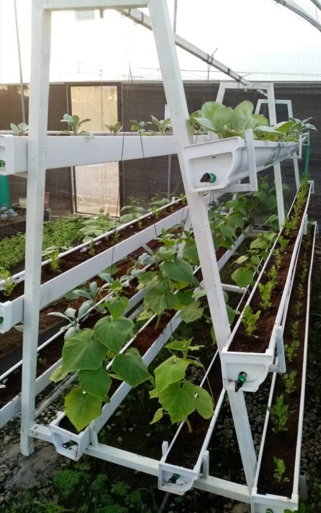 Responsive Drip Irrigation in Hydroponics System